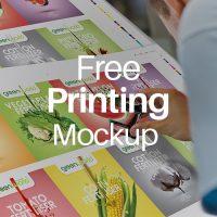 free mockup for printing 1 , alef design agency , free download , free psd mockup for printing 1, corporate identity
