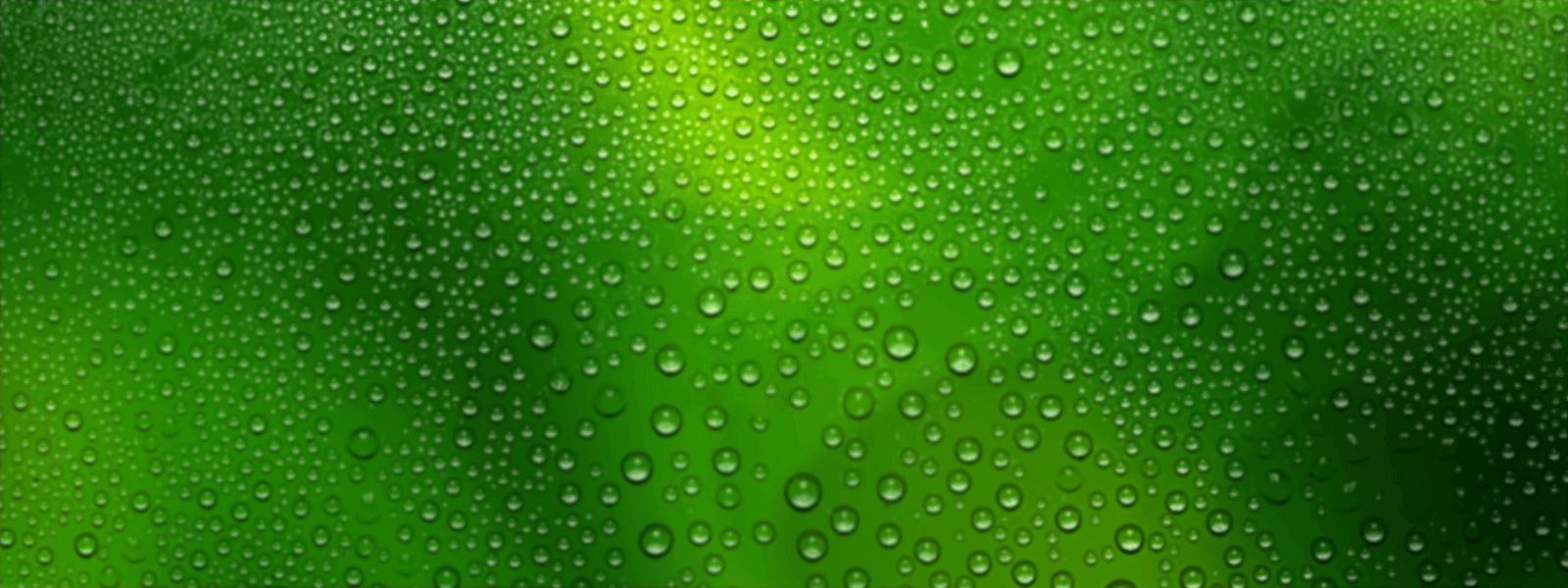 لایه هفتم اسلاید گرین ورلد، هویت بصری گرین ورلد، طراحی لوگو، طراحی لوگوتایپ، شرکت تبلیغاتی الف، طراحی هویت بصری