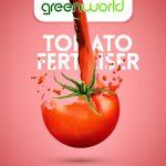 طراحی هویت بصری برند گرین ورلد